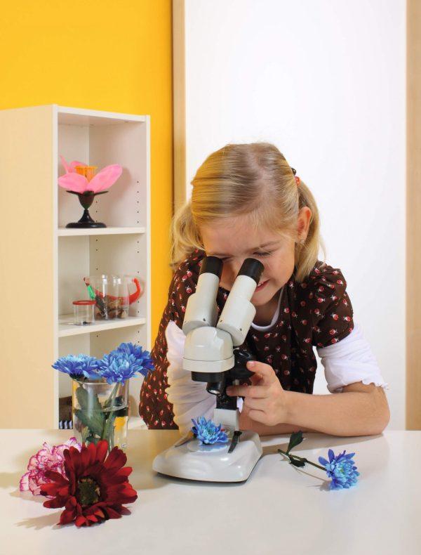 Microscop optic Stereo pentru elevi 2