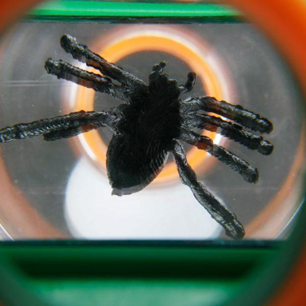 Lupa vizor pentru studierea insectelor: 4x, 6x 10
