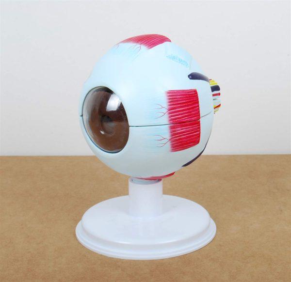 Ochiul 5