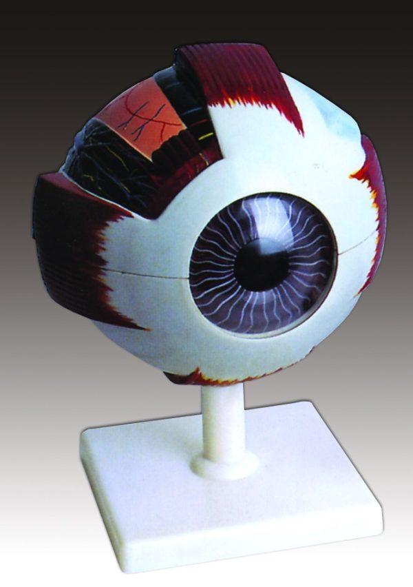 Ochiul 1