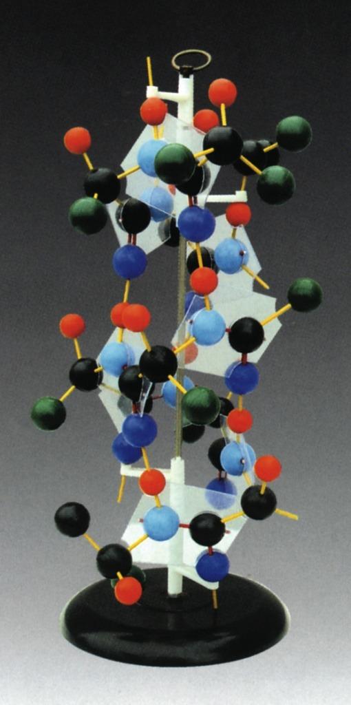 Structura proteinelor 1