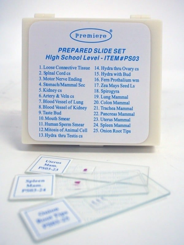 Set de preparate II. LICEU 1