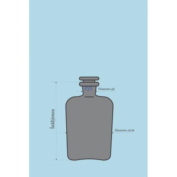 Sticla bruna pentru reactivi 3